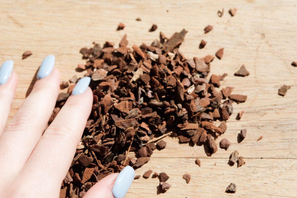 Der Vorteil von Pinienborke in deinem Substrat ist vor allem, dass sie viel Sauerstoff enthalten, was zur Wurzelbildung beiträgt.