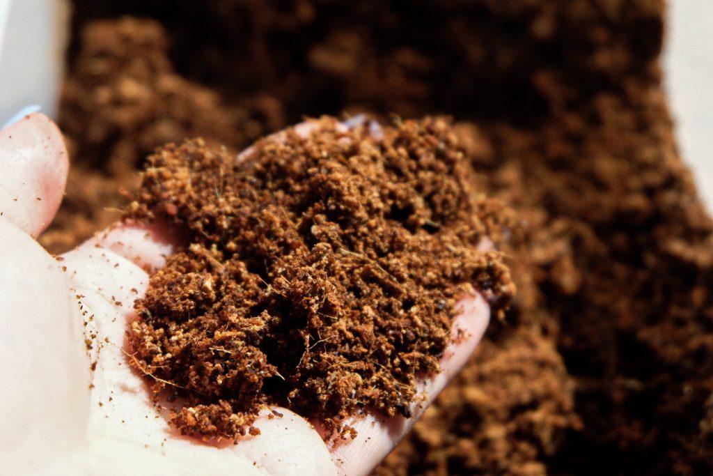 Während normale Erde sich mit der Zeit verdichtet und festsetzt, lockert Kokoserde* das Substrat auf.